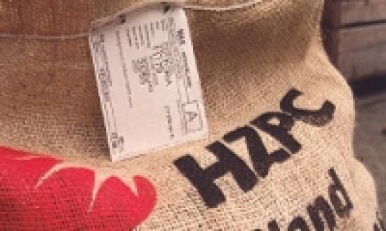 Patatas de siembra importación